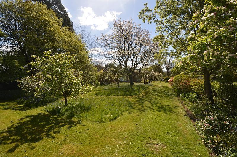 Garden Property to let in Rogate