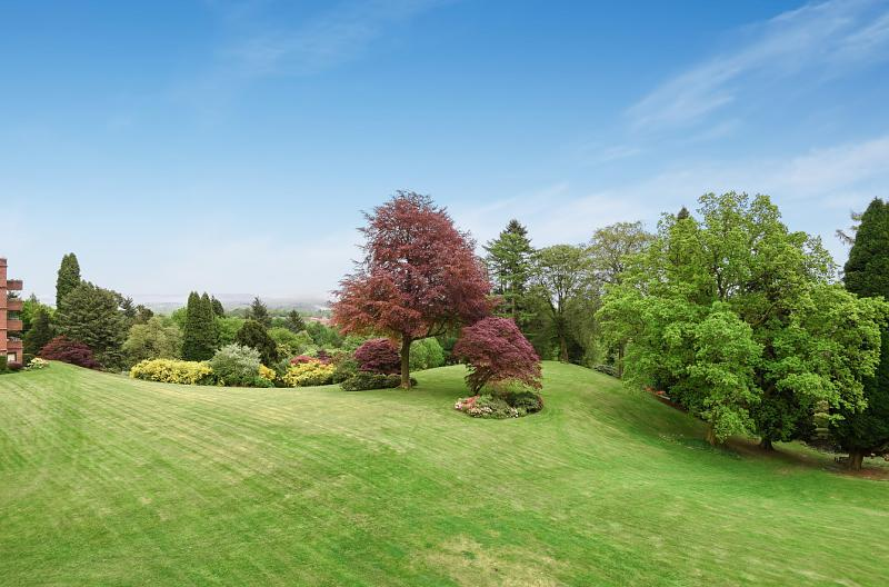 Garden property to rent in Haslemere